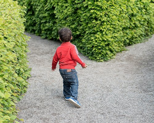 Child maze
