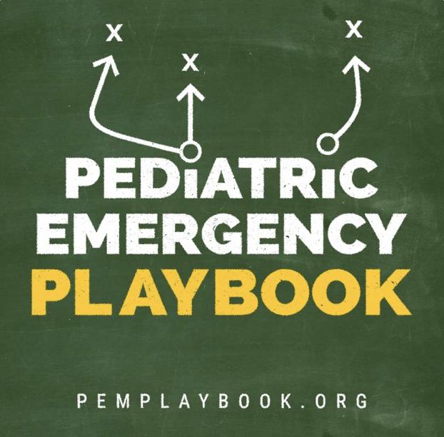 PEM Playbook Logo
